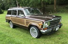 1989 Jeep Grand Wagoneer
